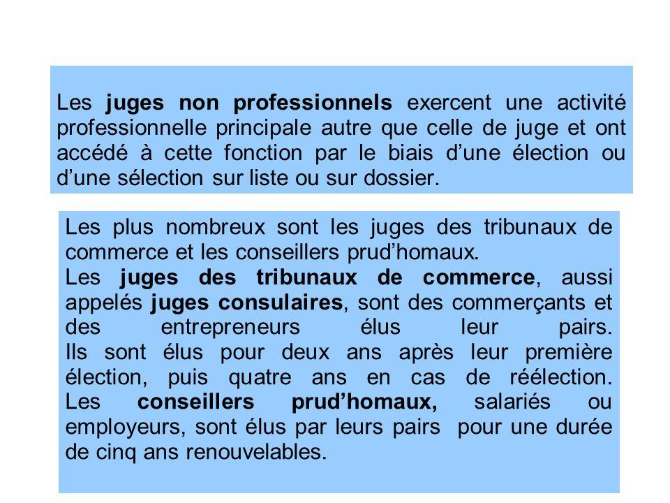 Les juges non professionnels exercent une activité professionnelle principale autre que celle de juge et ont accédé à cette fonction par le biais d'une élection ou d'une sélection sur liste ou sur dossier.