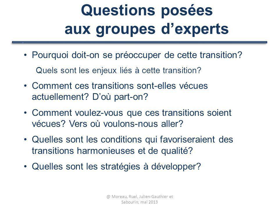 Questions posées aux groupes d'experts