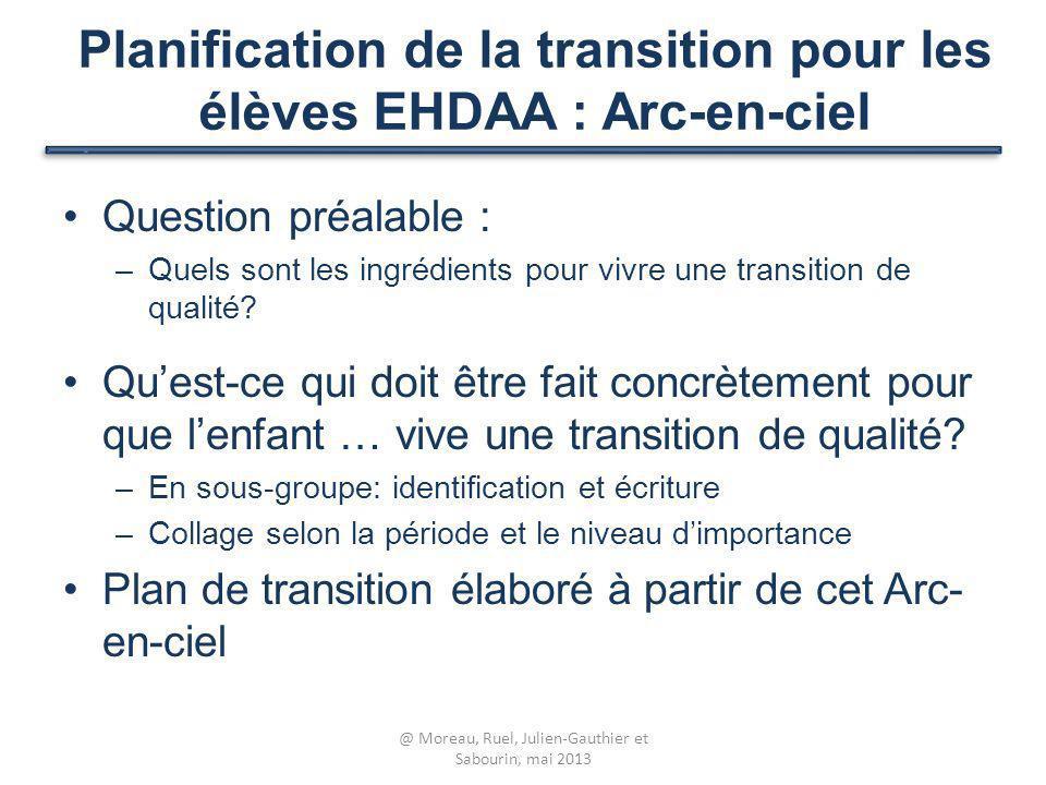 Planification de la transition pour les élèves EHDAA : Arc-en-ciel