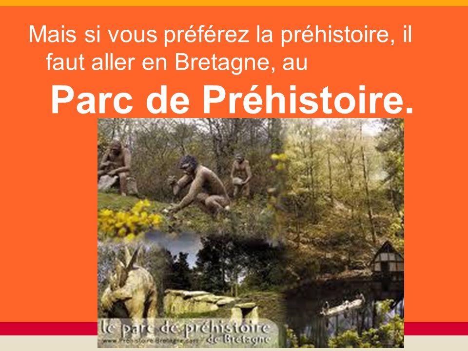 Mais si vous préférez la préhistoire, il faut aller en Bretagne, au