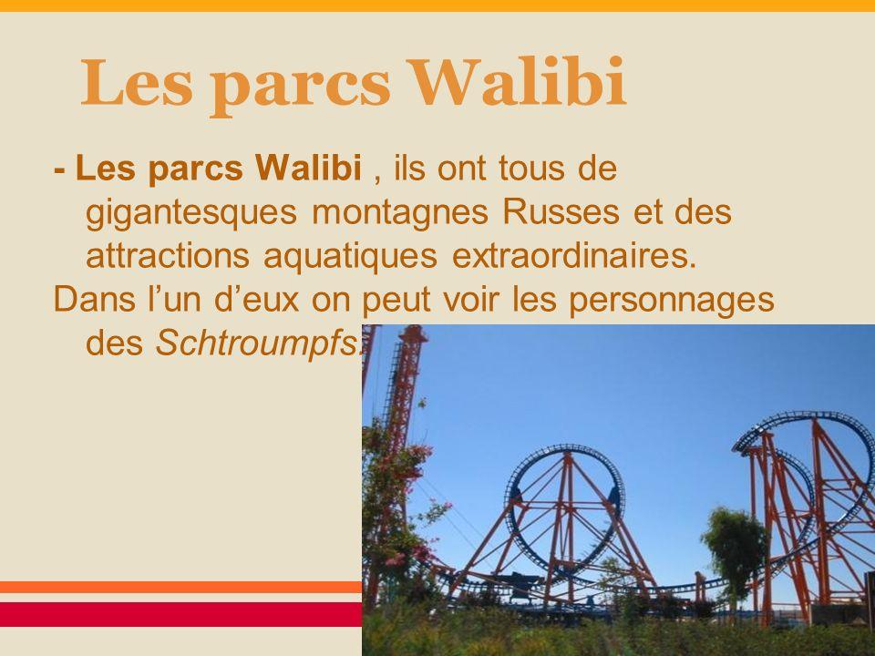 Les parcs Walibi - Les parcs Walibi , ils ont tous de gigantesques montagnes Russes et des attractions aquatiques extraordinaires.