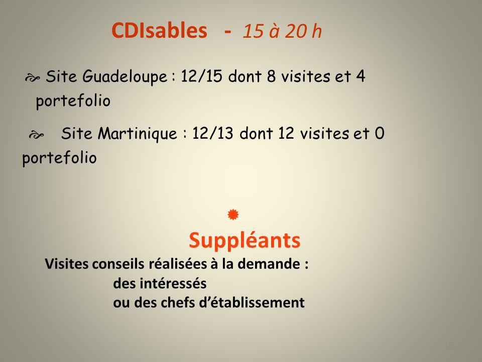 CDIsables - 15 à 20 h  Site Guadeloupe : 12/15 dont 8 visites et 4 portefolio.  Site Martinique : 12/13 dont 12 visites et 0 portefolio.