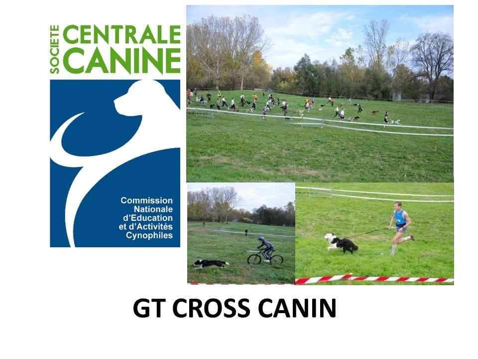GT CROSS CANIN