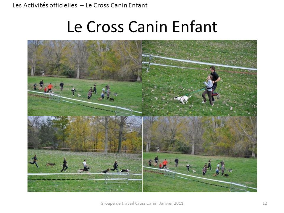Les Activités officielles – Le Cross Canin Enfant