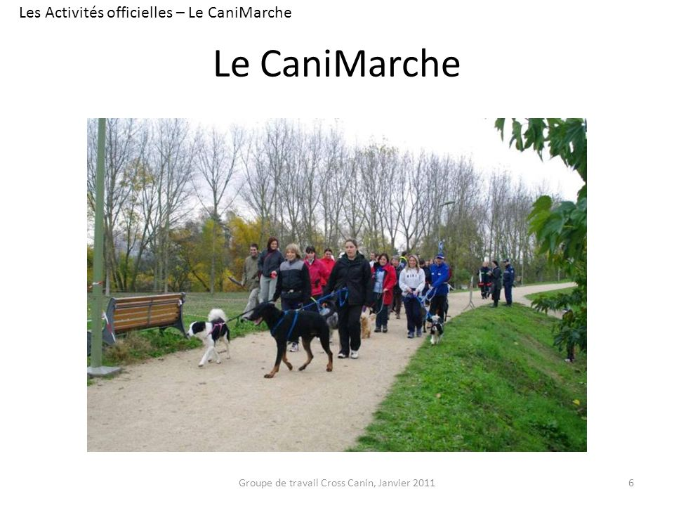 Le CaniMarche Les Activités officielles – Le CaniMarche