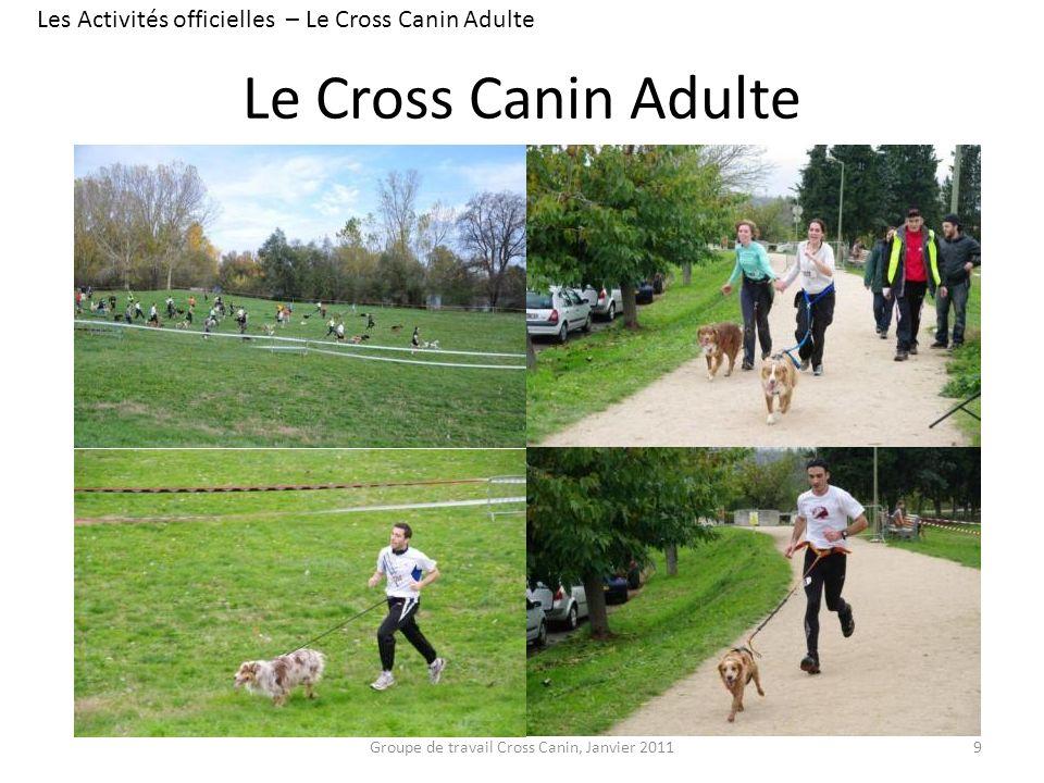 Les Activités officielles – Le Cross Canin Adulte