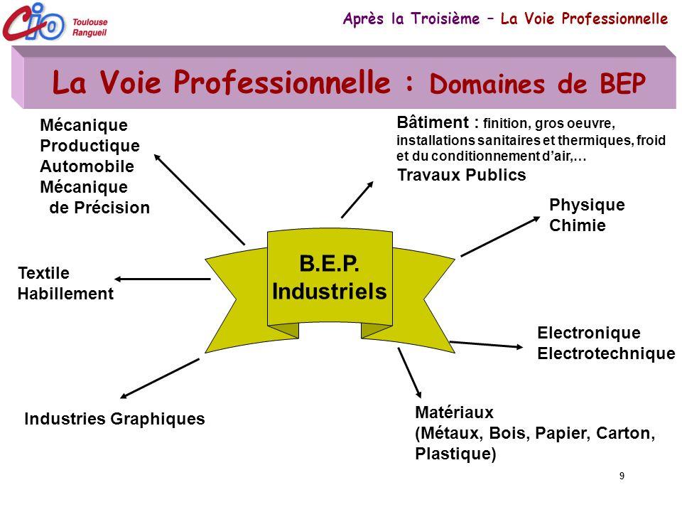 La Voie Professionnelle : Domaines de BEP