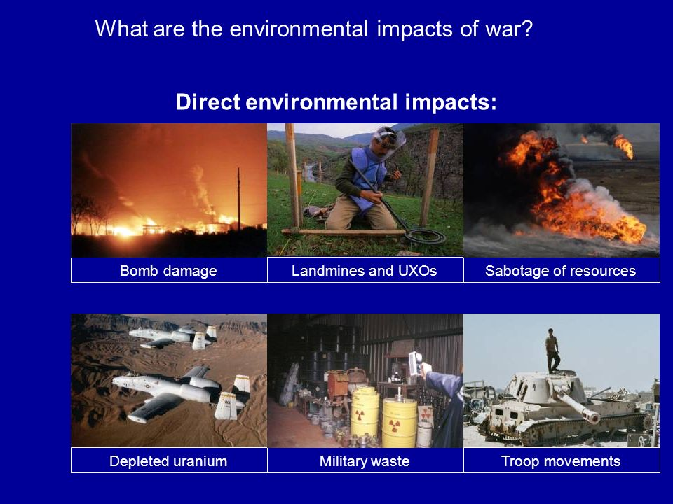 Direct environmental impacts: