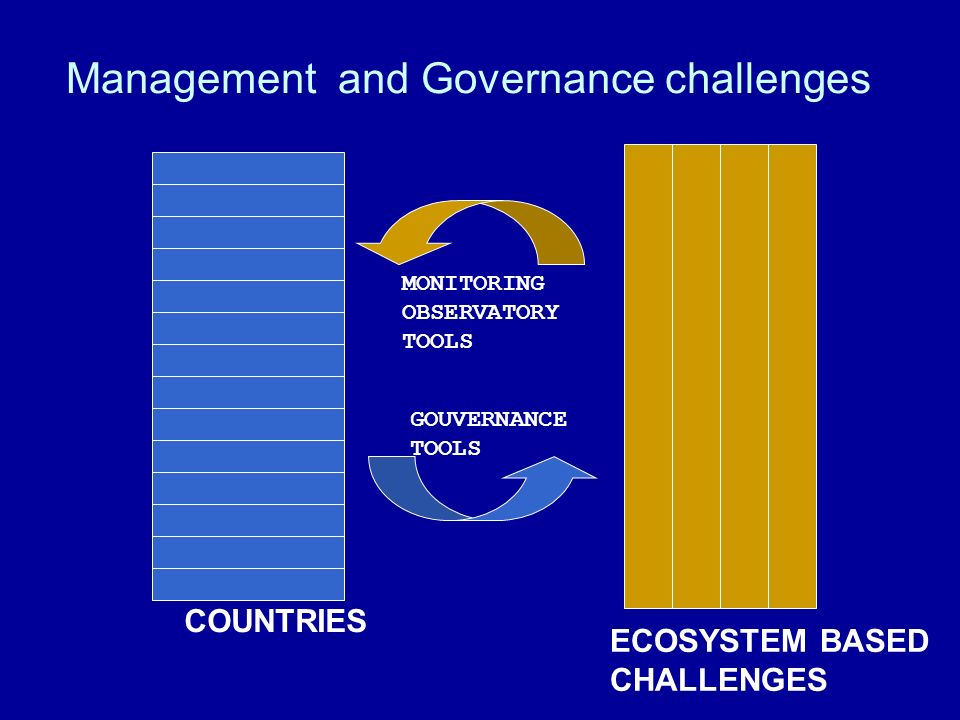 Management and Governance challenges