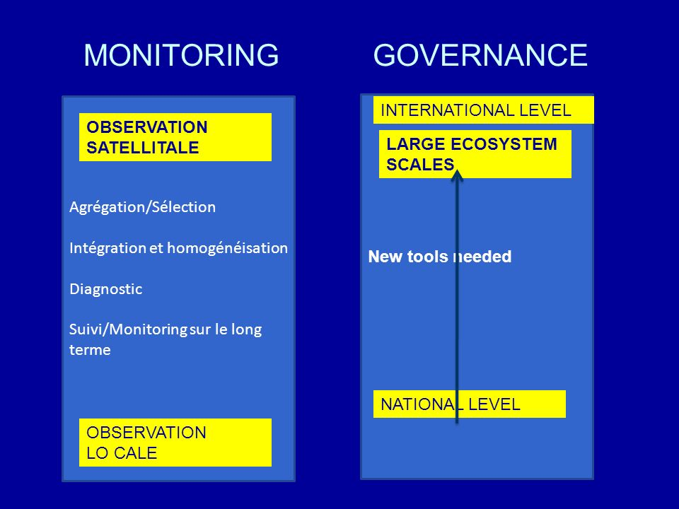 MONITORING GOVERNANCE INTERNATIONAL LEVEL OBSERVATION SATELLITALE