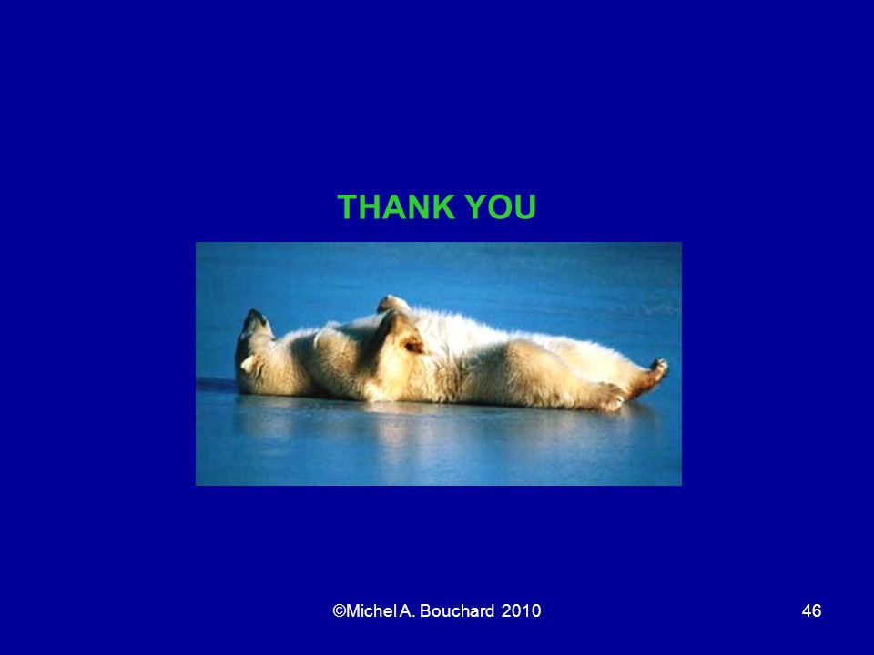 THANK YOU ©Michel A. Bouchard 2010