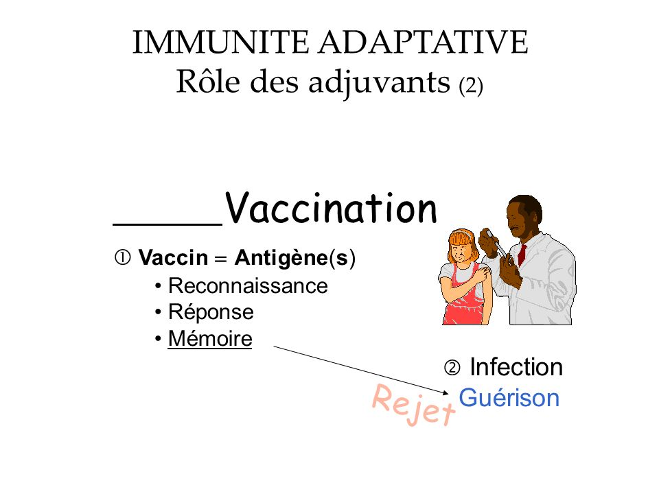 IMMUNITE ADAPTATIVE Rôle des adjuvants (2) Rejet  Infection