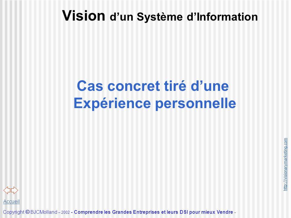 Vision d'un Système d'Information