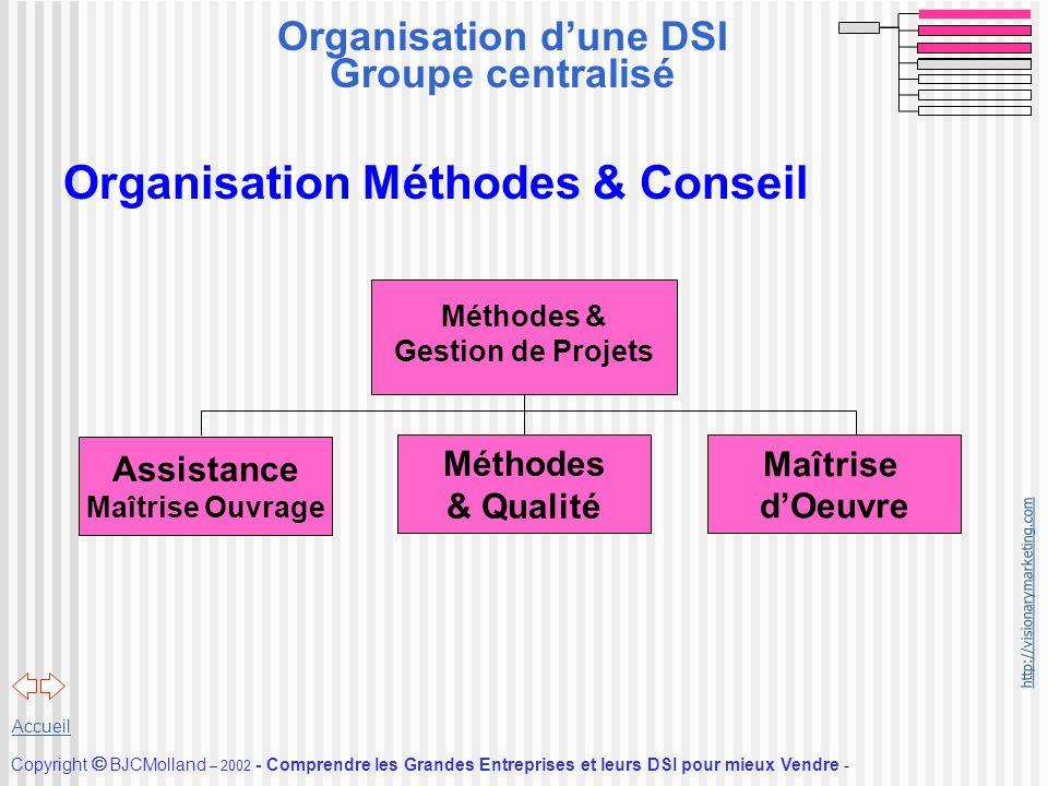 Organisation d'une DSI Groupe centralisé