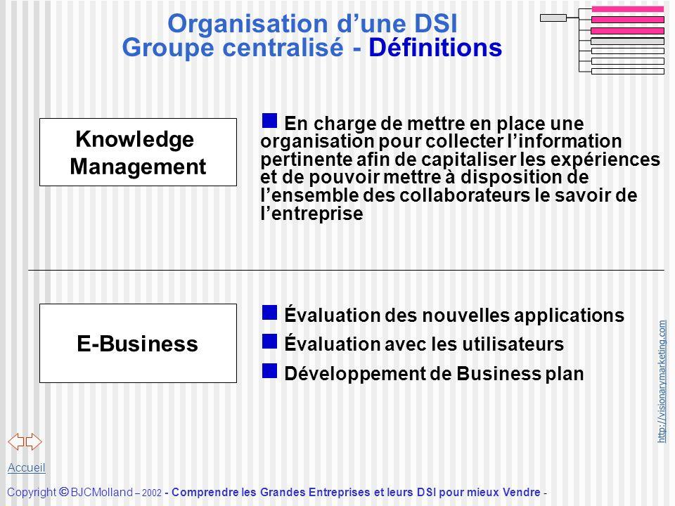 Organisation d'une DSI Groupe centralisé - Définitions