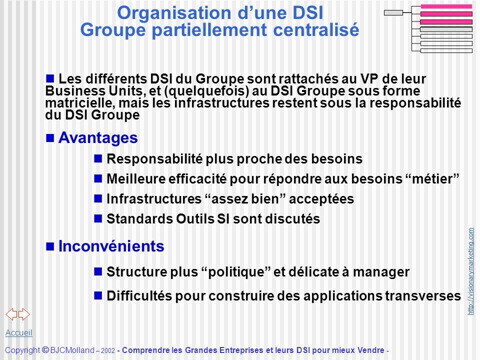 Organisation d'une DSI Groupe partiellement centralisé