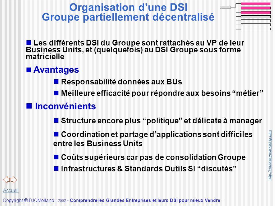 Organisation d'une DSI Groupe partiellement décentralisé
