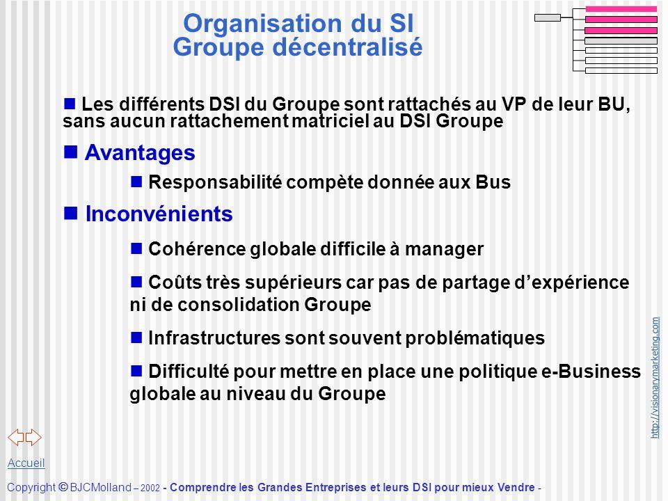 Organisation du SI Groupe décentralisé