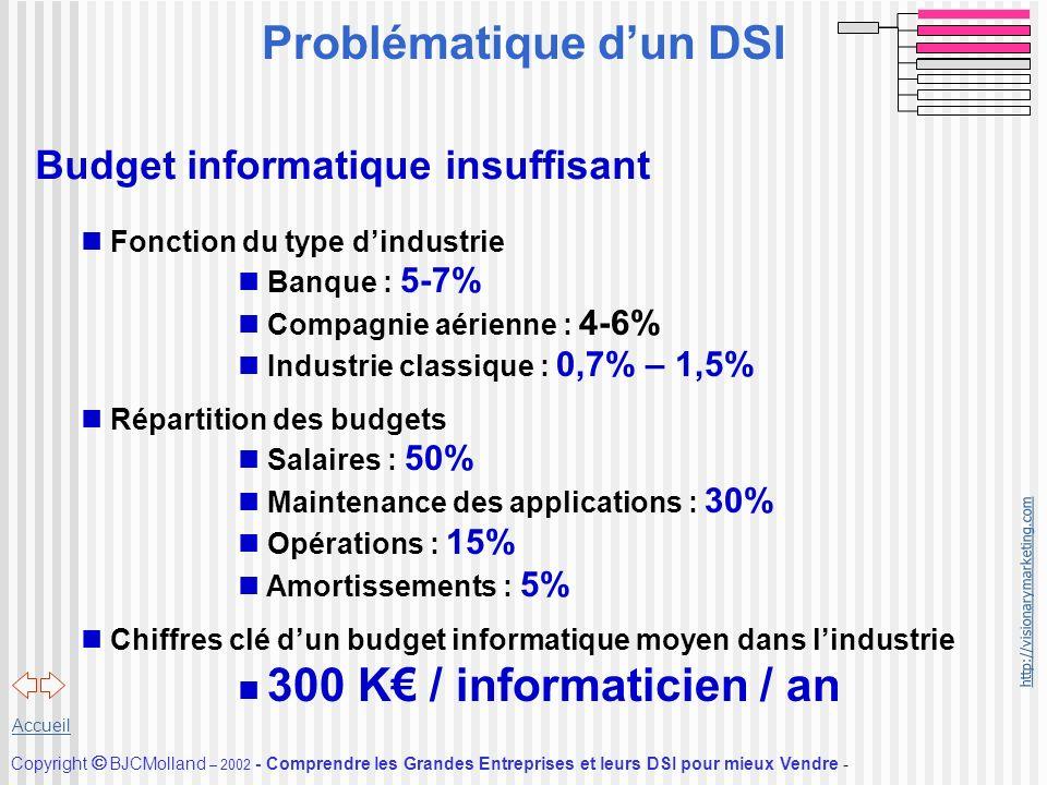 Problématique d'un DSI