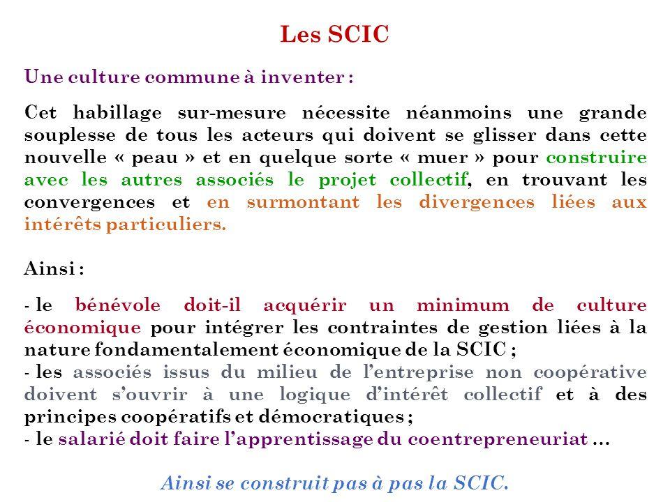 Ainsi se construit pas à pas la SCIC.