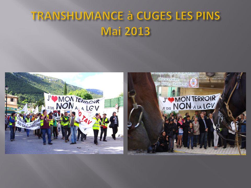 TRANSHUMANCE à CUGES LES PINS Mai 2013