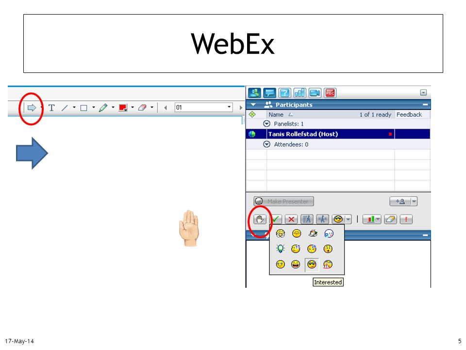 WebEx 31-Mar-17 Mention: how to raise hand for question