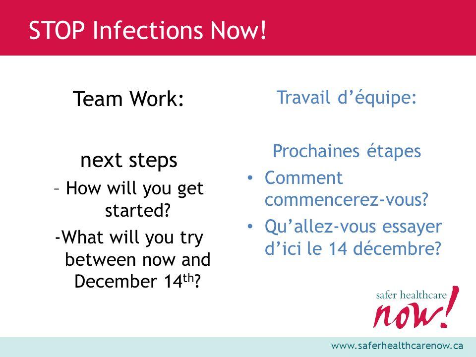 Team Work: next steps Travail d'équipe: Prochaines étapes