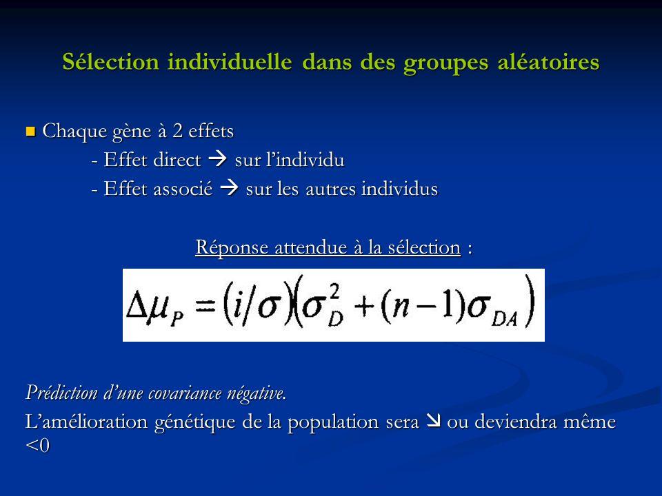 Sélection individuelle dans des groupes aléatoires