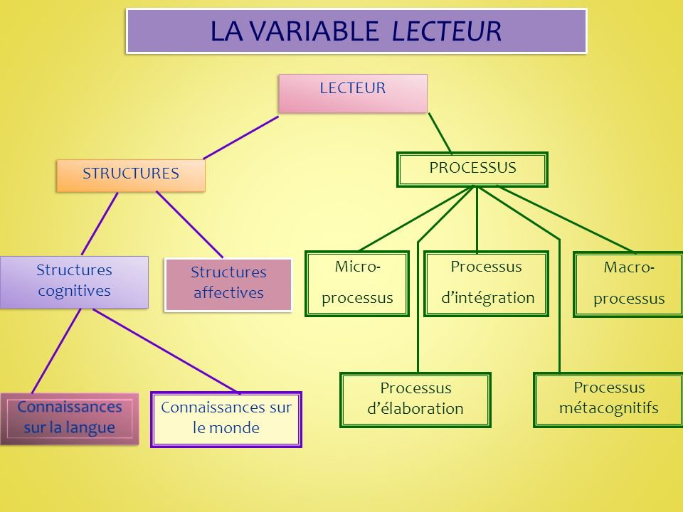 LA VARIABLE LECTEUR LECTEUR PROCESSUS STRUCTURES Structures cognitives