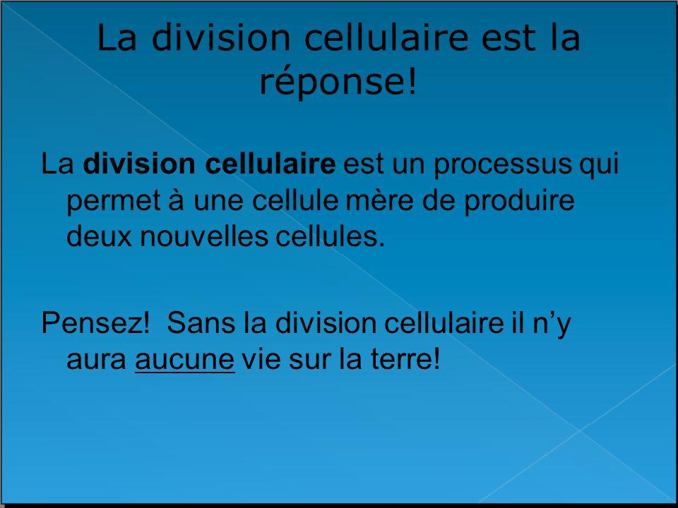 La division cellulaire est la réponse!
