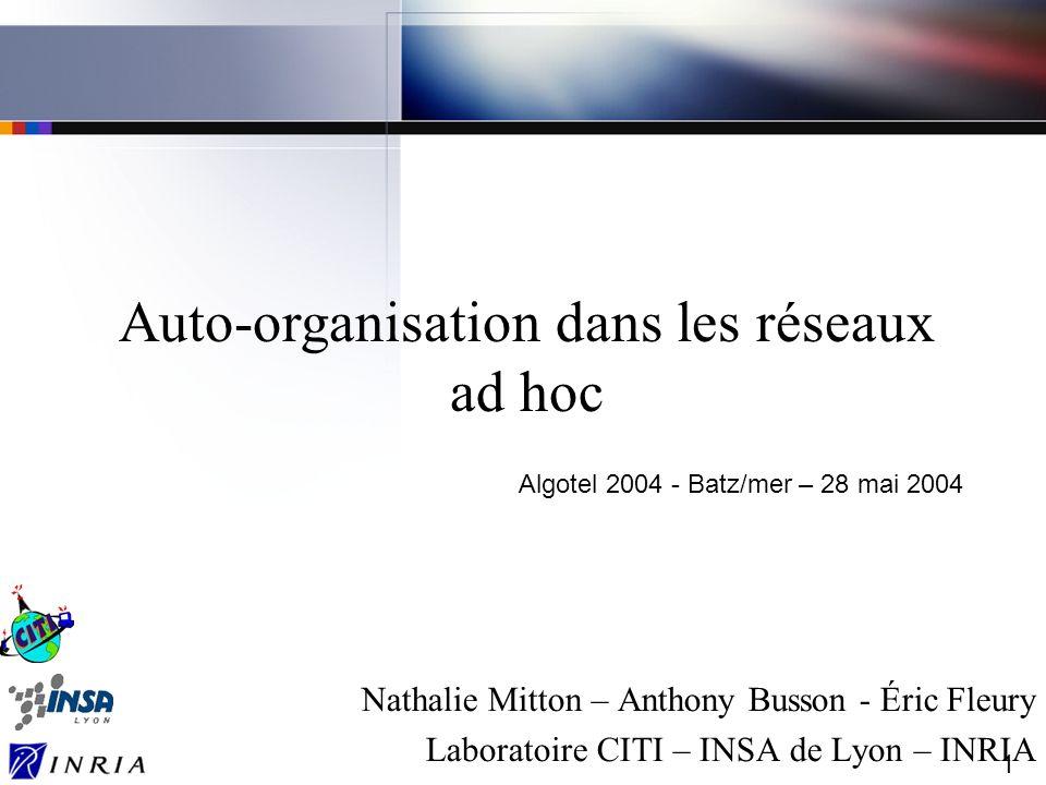 Auto-organisation dans les réseaux ad hoc