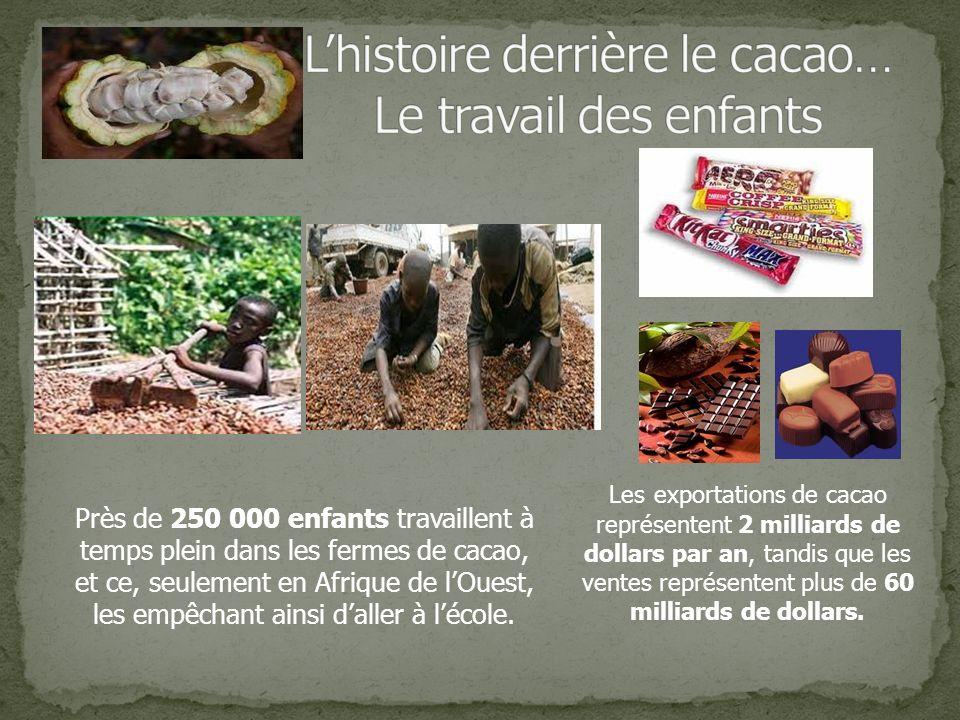 L'histoire derrière le cacao… Le travail des enfants