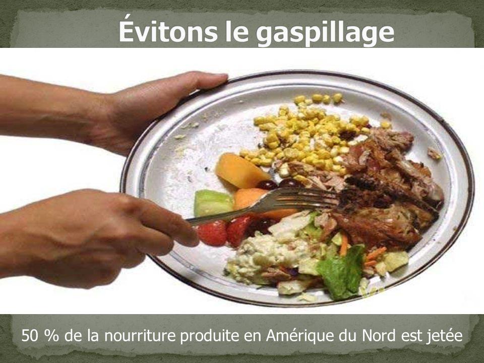 50 % de la nourriture produite en Amérique du Nord est jetée