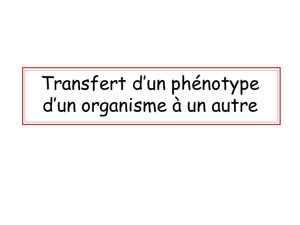 Transfert d'un phénotype d'un organisme à un autre