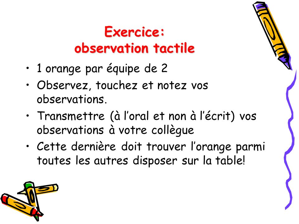 Exercice: observation tactile