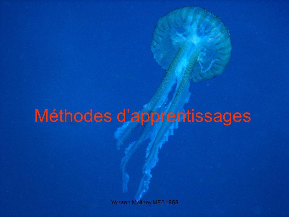 Méthodes d'apprentissages