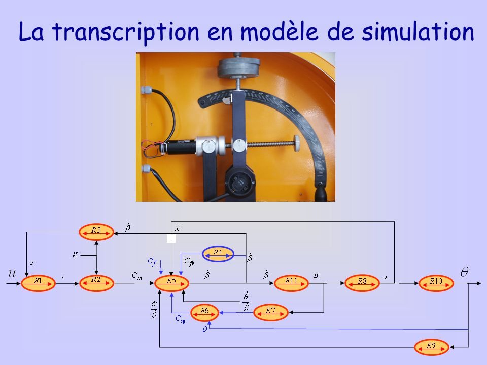 La transcription en modèle de simulation