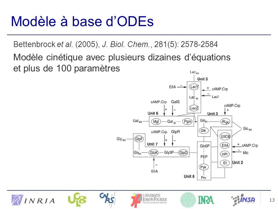 Modèle à base d'ODEs Bettenbrock et al. (2005), J. Biol. Chem., 281(5): 2578-2584.