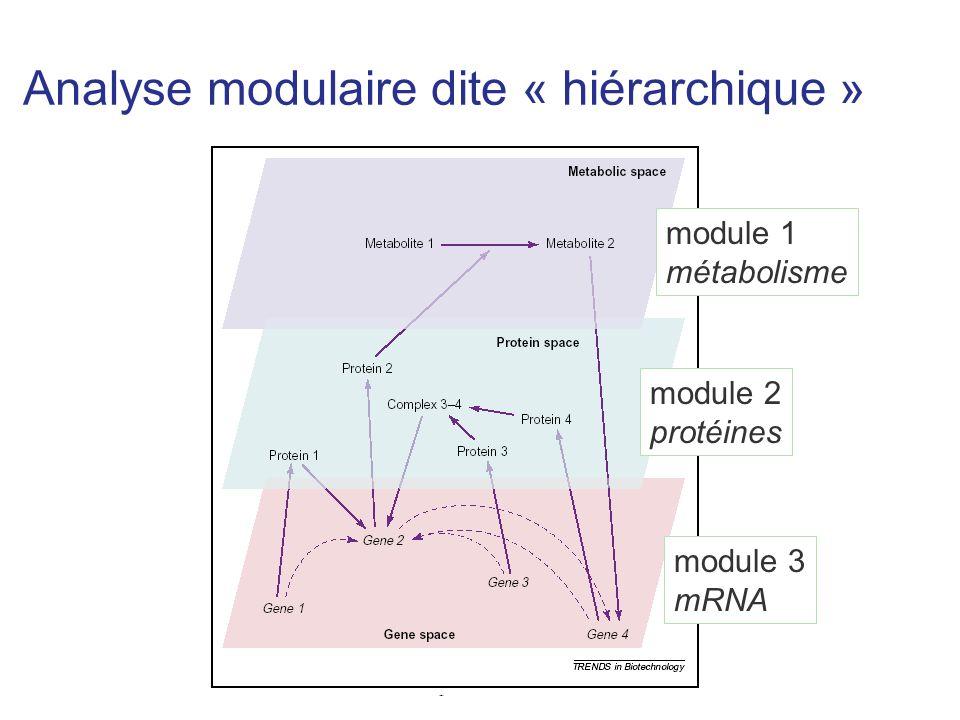 Analyse modulaire dite « hiérarchique »