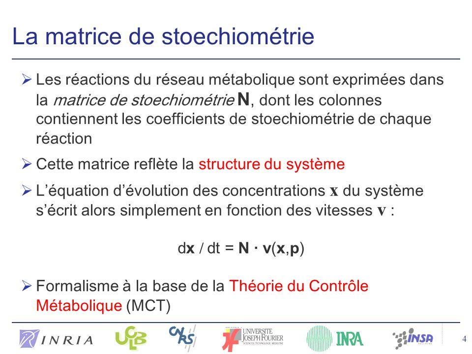 La matrice de stoechiométrie