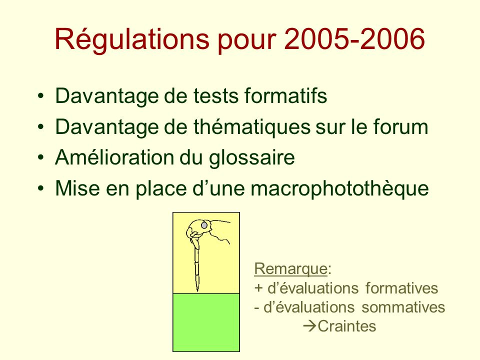 Régulations pour 2005-2006 Davantage de tests formatifs