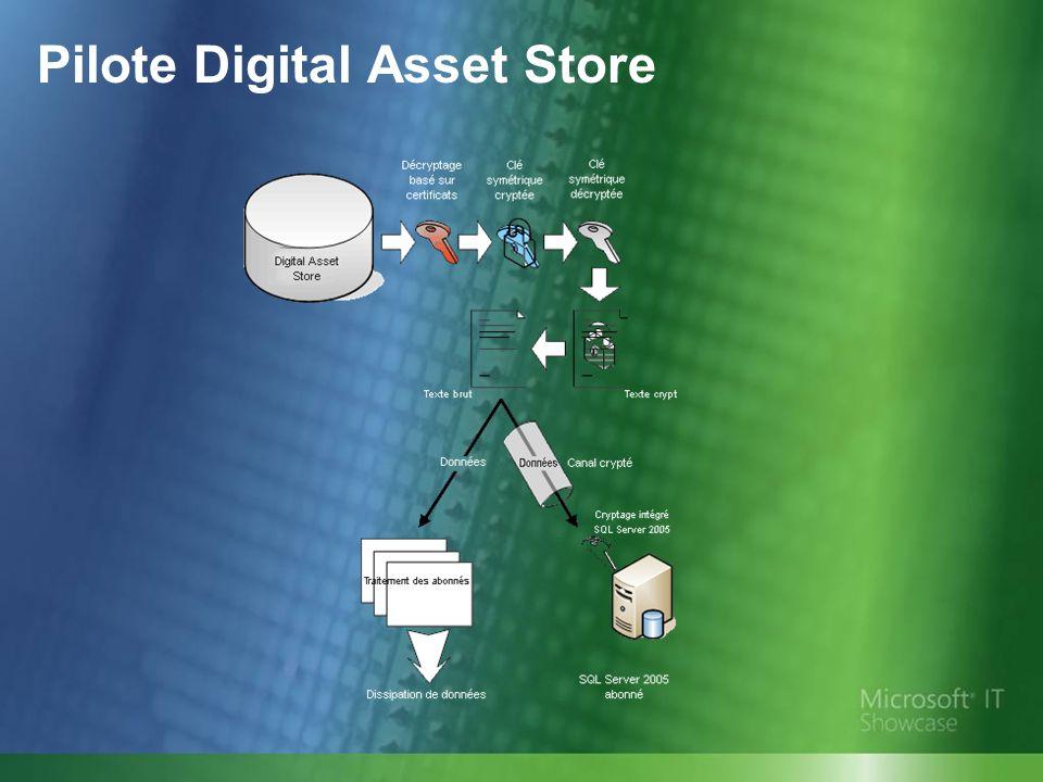 Pilote Digital Asset Store