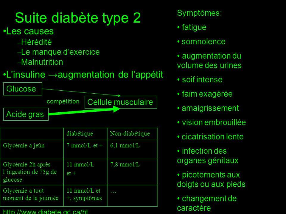 Suite diabète type 2 Les causes L'insuline →augmentation de l'appétit