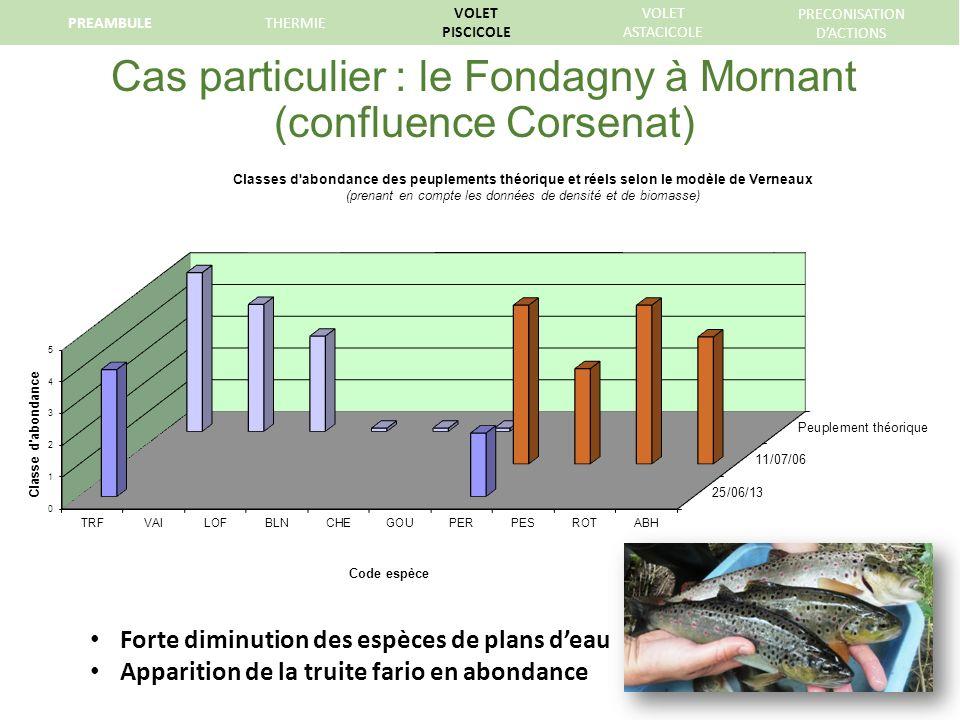 Cas particulier : le Fondagny à Mornant (confluence Corsenat)