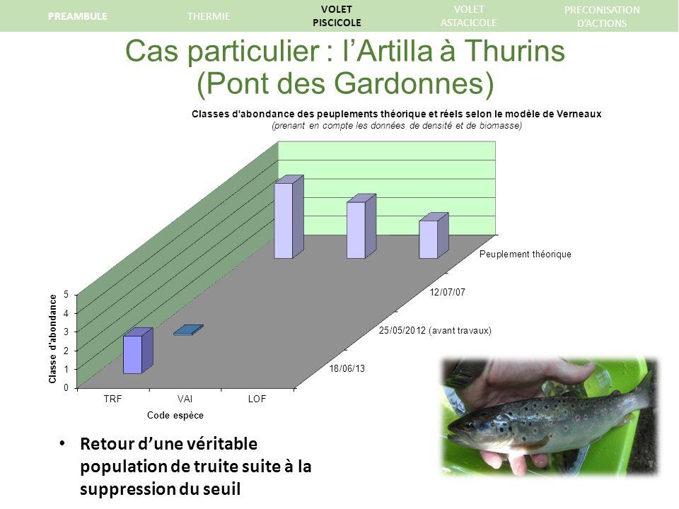 Cas particulier : l'Artilla à Thurins (Pont des Gardonnes)