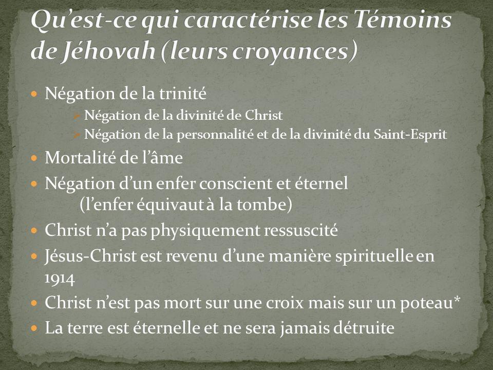 Qu'est-ce qui caractérise les Témoins de Jéhovah (leurs croyances)