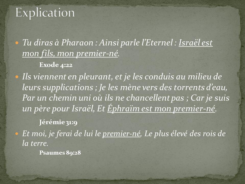 Explication Tu diras à Pharaon : Ainsi parle l'Eternel : Israël est mon fils, mon premier-né. Exode 4:22.