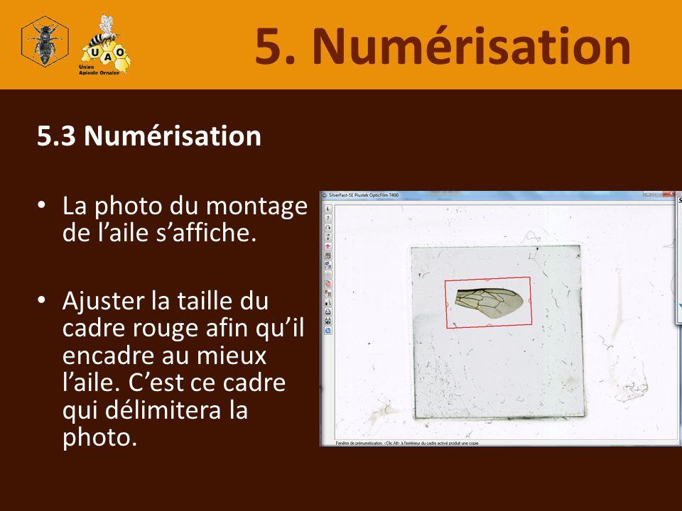 5. Numérisation 5.3 Numérisation