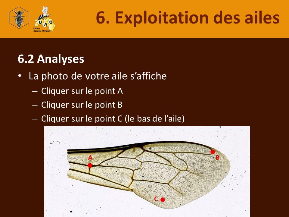 6. Exploitation des ailes
