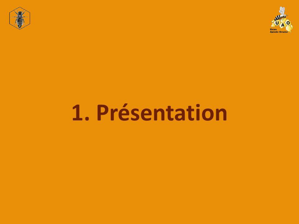 1. Présentation 2.1 Scanner à diapositive